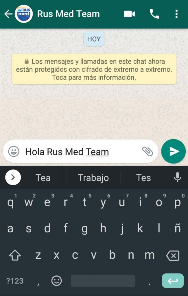 Chat Whatsapp Business